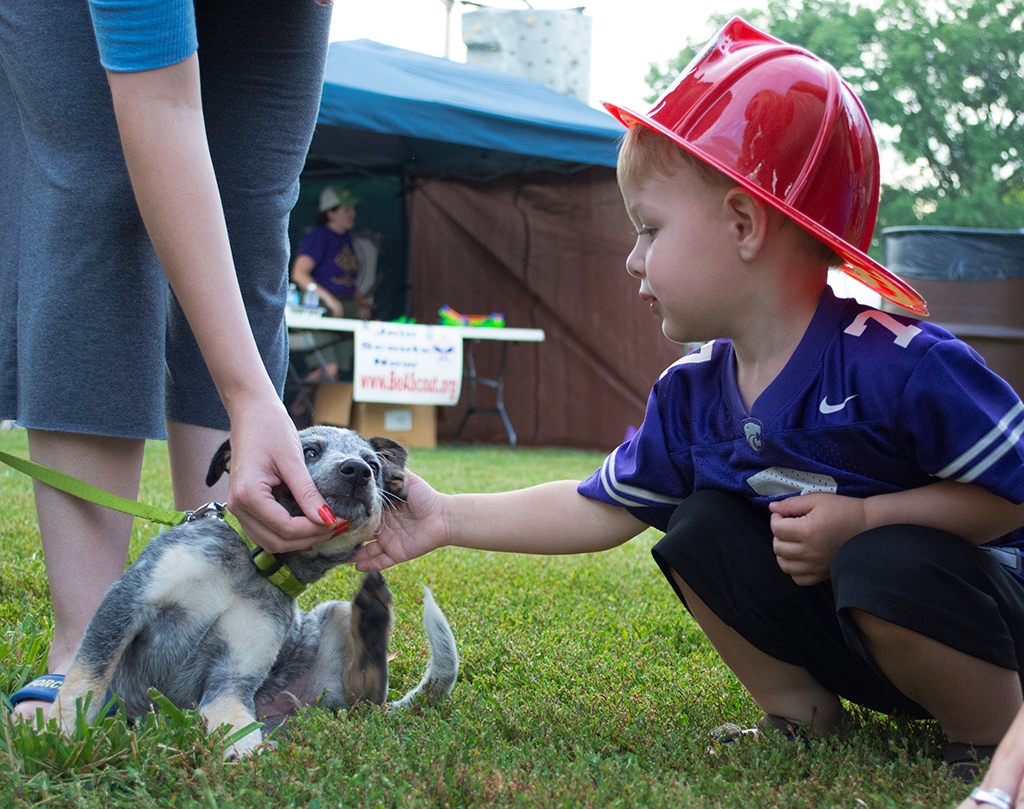 Rowan Minton, 2 year old Manhatan Resident, pets a blue heeler at Purple Power Play in Manhattan City Park on Aug. 26, 2014. The Manhattan Fire Department gave out plastic fire hats to many people who attended.